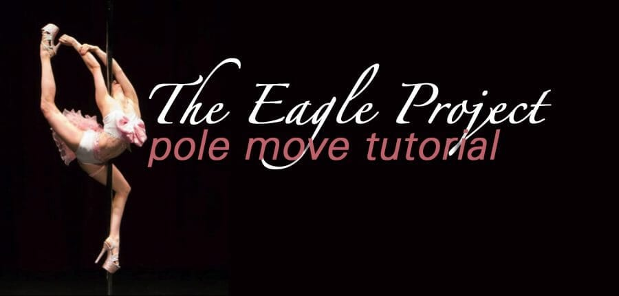 The Eagle Project: Part 3