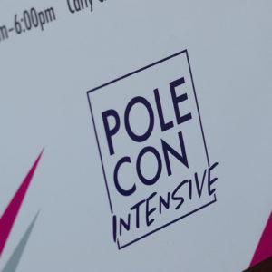POLECON Intensive 2017-0173