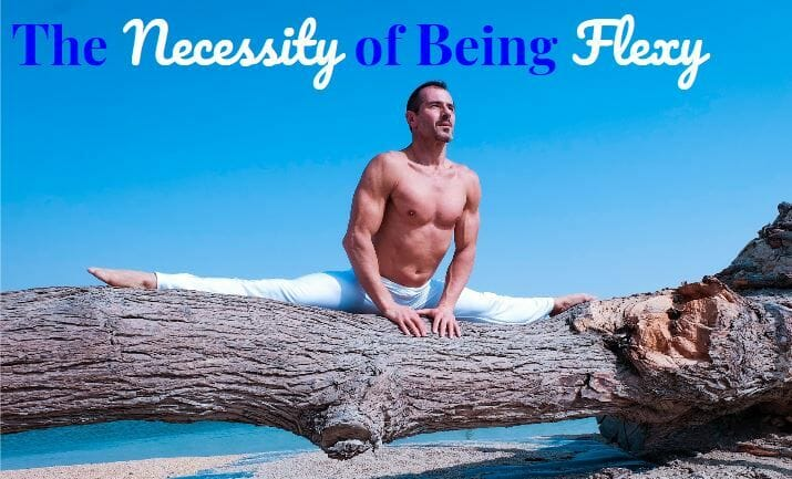 The Necessity Of Being Flexy